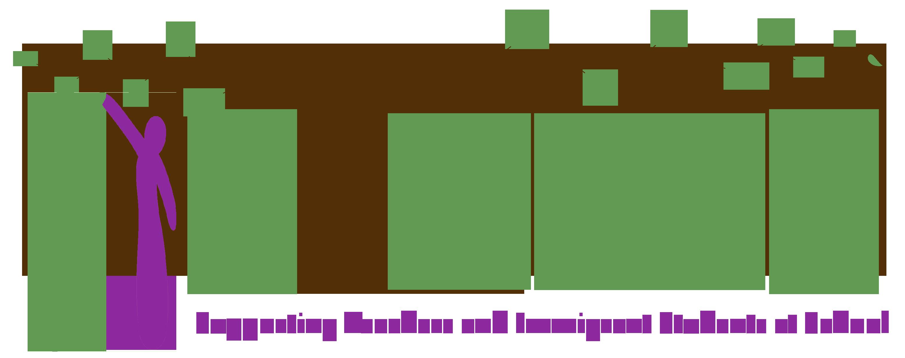Student Integration Programme